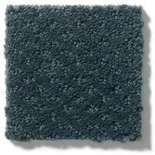 Shaw Floors Value Collections Infallible Instinct Net Moon Bay 00481_E9774
