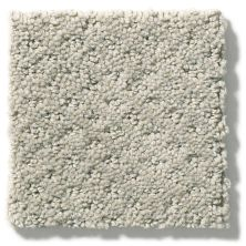 Shaw Floors Value Collections Infallible Instinct Net Silhouette 00570_E9774