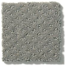 Shaw Floors Value Collections Infallible Instinct Net Metal 00577_E9774