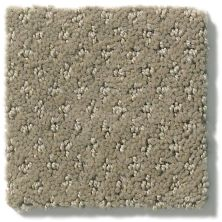 Shaw Floors Value Collections Infallible Instinct Net Abbey Stone 00771_E9774