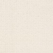 Shaw Floors Foundations Complete Control Net Crisp Linen 00171_E9775