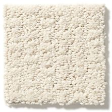 Shaw Floors Value Collections Complete Control Net Alabaster 00172_E9775
