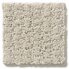 Shaw Floors Value Collections Complete Control Net Quiet Moment 00175_E9775
