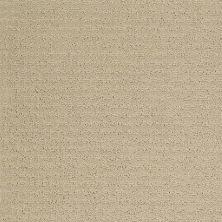 Shaw Floors Foundations Complete Control Net Soft Honey 00182_E9775