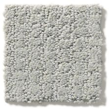 Shaw Floors Value Collections Complete Control Net Offshore Mist 00477_E9775