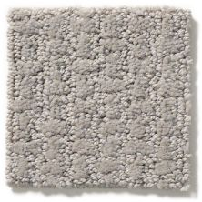 Shaw Floors Value Collections Complete Control Net Silhouette 00570_E9775