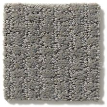 Shaw Floors Value Collections Complete Control Net Metal 00577_E9775