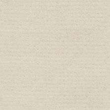 Shaw Floors Value Collections Alluring Disposition Net Alabaster 00172_E9777