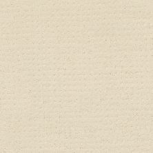Shaw Floors Value Collections Alluring Disposition Net Ivory Paper 00180_E9777