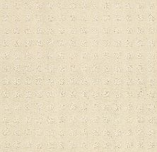 Shaw Floors Value Collections Alluring Disposition Net Treasure 00181_E9777