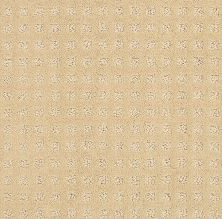 Shaw Floors Value Collections Alluring Disposition Net Golden Rule 00185_E9777