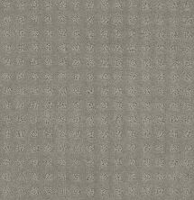 Shaw Floors Value Collections Alluring Disposition Net Slate 00570_E9777