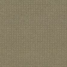 Shaw Floors Value Collections Alluring Disposition Net Mocha 00790_E9777