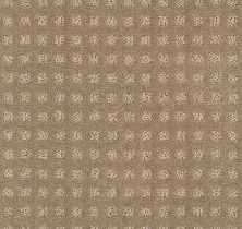 Shaw Floors Value Collections Alluring Disposition Net Grounded 00796_E9777