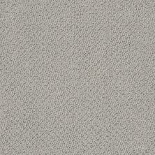 Shaw Floors Value Collections Smart Thinking Net Grey Stone 00562_E9778