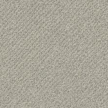 Shaw Floors Value Collections Smart Thinking Net Slate 00570_E9778