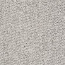 Shaw Floors Value Collections Smart Thinking Net Lady In Gray 00590_E9778