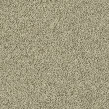 Shaw Floors Value Collections Smart Thinking Net Mocha 00790_E9778