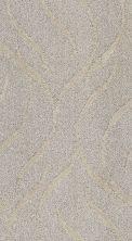 Shaw Floors Foundations Vineyard Grove Net Sand Swept 00102_E9780