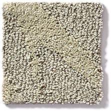 Shaw Floors Vineyard Grove Net Sand Swept 00102_E9780