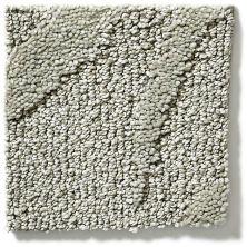 Shaw Floors Vineyard Grove Net Oatmeal 00103_E9780
