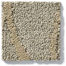 Shaw Floors Vineyard Grove Net Champagne 00200_E9780