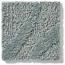 Shaw Floors Vineyard Grove Net Pewter 00501_E9780
