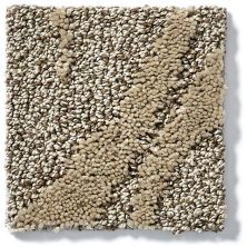 Shaw Floors Vineyard Grove Net Raw Wood 00700_E9780