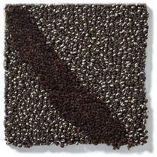 Shaw Floors Vineyard Grove Net Coffee Bean 00704_E9780