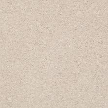 Shaw Floors Bellera Basic Rules Net Blush 00104_E9782