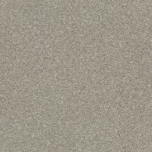 Shaw Floors Bellera Basic Rules Net Flax 00502_E9782