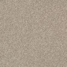 Shaw Floors Bellera Just A Hint I Net Toast 00105_E9783