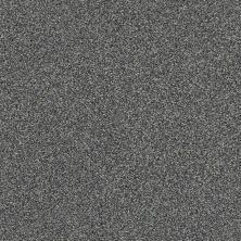 Shaw Floors Bellera Just A Hint I Net Steel 00505_E9783