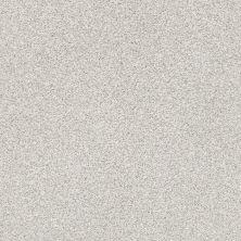 Shaw Floors Bellera Just A Hint I Net Nickel 00510_E9783
