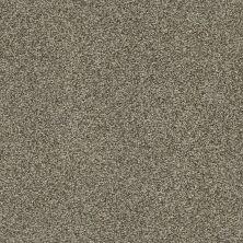 Shaw Floors Bellera Just A Hint I Net Dreamy Taupe 00708_E9783
