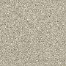 Shaw Floors Bellera Just A Hint II Net Eggshell 00102_E9784