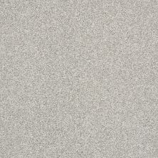Shaw Floors Bellera Just A Hint II Net Dew 00106_E9784