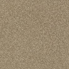 Shaw Floors Bellera Just A Hint II Net Gold Rush 00200_E9784