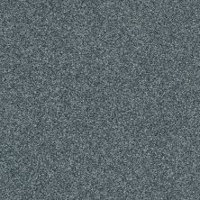 Shaw Floors Bellera Just A Hint II Net Blue Wing 00310_E9784