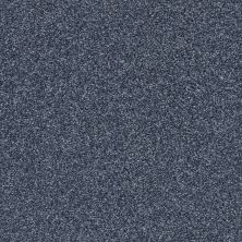 Shaw Floors Bellera Just A Hint II Net Indigo 00405_E9784