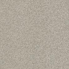 Shaw Floors Bellera Just A Hint II Net Flax 00502_E9784