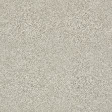 Shaw Floors Bellera Just A Hint II Net Fog 00503_E9784