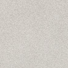 Shaw Floors Bellera Just A Hint II Net Nickel 00510_E9784