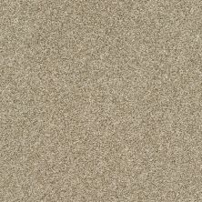 Shaw Floors Bellera Just A Hint II Net Khaki 00700_E9784