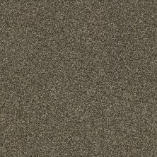 Shaw Floors Bellera Just A Hint II Net Mink 00701_E9784