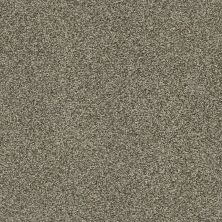 Shaw Floors Bellera Just A Hint II Net Dreamy Taupe 00708_E9784