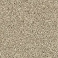 Shaw Floors Bellera Points Of Color I Net Khaki 00700_E9785