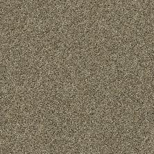 Shaw Floors Bellera Points Of Color II Net Leather 00704_E9786