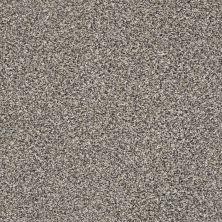Shaw Floors Bellera Perpetual I Net Fog 00503_E9787