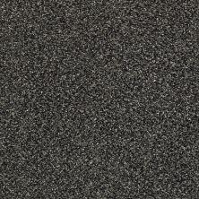 Shaw Floors Bellera Perpetual I Net Truffle 00506_E9787